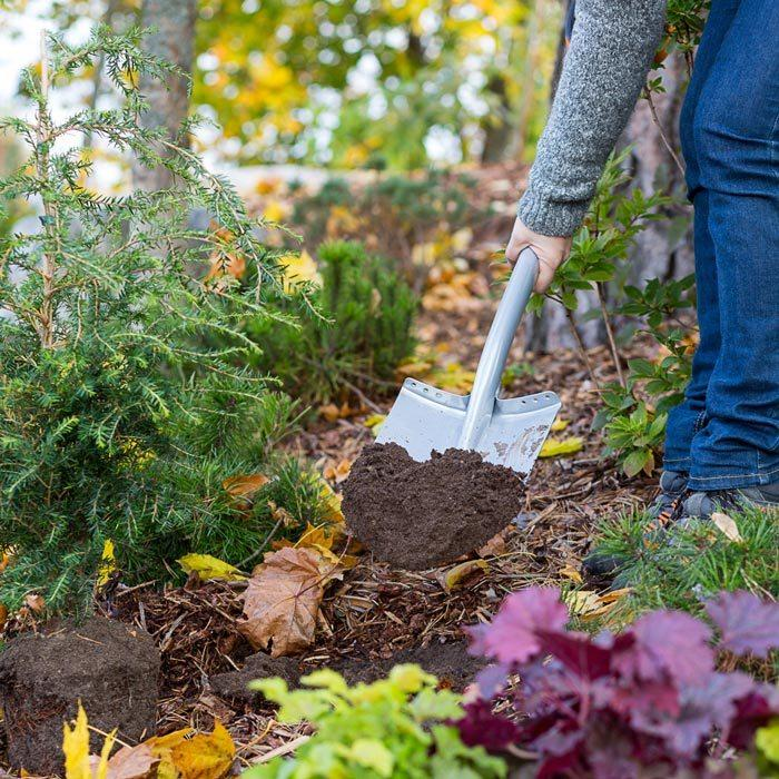 tidy-up-your-garden_imagefull.jpg